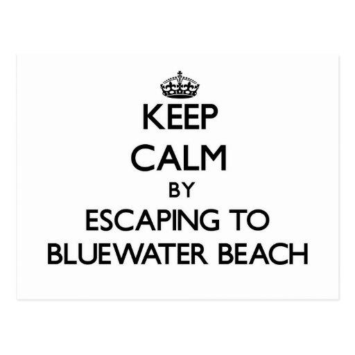 Guarde la calma escapándose a la playa la Florida  Tarjetas Postales