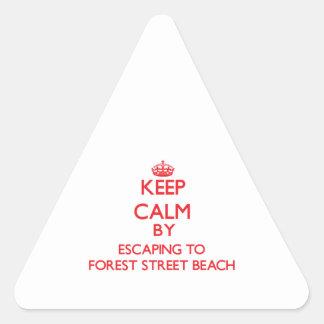 Guarde la calma escapándose a la playa Massa de la Calcomanías De Triangulos