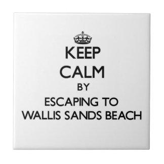 Guarde la calma escapándose a la playa nueva ha de azulejos ceramicos