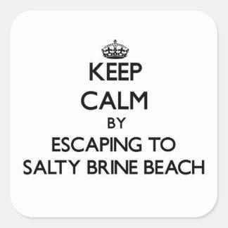 Guarde la calma escapándose a la playa salada Rhod
