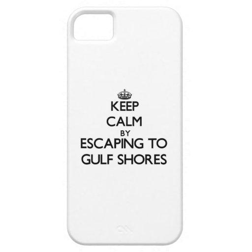 Guarde la calma escapándose a las orillas Tejas de iPhone 5 Cárcasa