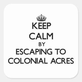 Guarde la calma escapándose a los acres coloniales pegatina cuadrada