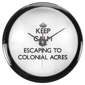 Guarde la calma escapándose a los acres coloniales reloj pecera