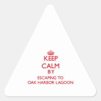 Guarde la calma escapándose al lavado de la laguna calcomanías de trianguloes personalizadas