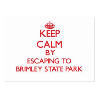Guarde la calma escapándose al parque de estado de tarjetas de visita grandes