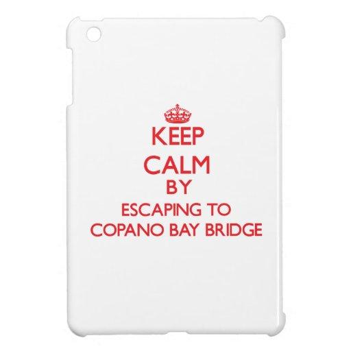 Guarde la calma escapándose al puente Tejas de la