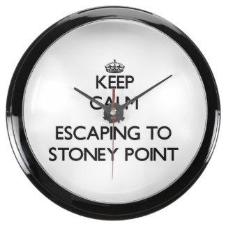 Guarde la calma escapándose al punto Michigan de S Relojes Aquavista