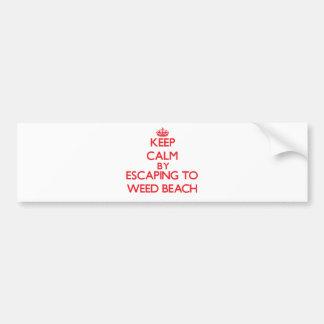 Guarde la calma escapándose para escardar la playa pegatina para coche