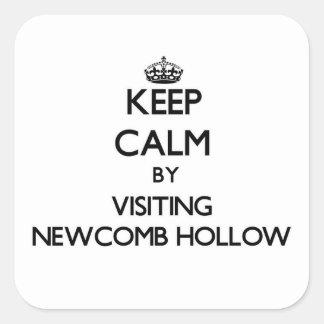 Guarde la calma por Newcomb que visita