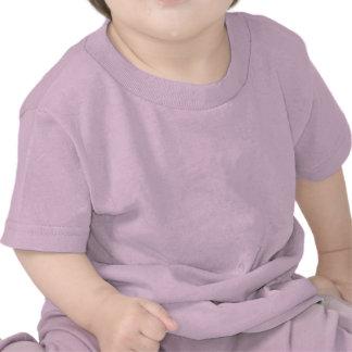 Guarde la calma que estamos teniendo un bebé en c camisetas
