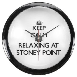 Guarde la calma relajándose en el punto Michigan d Reloj Acuario