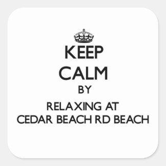 Guarde la calma relajándose en la playa Wisc del R