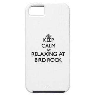 Guarde la calma relajándose en la roca California iPhone 5 Protectores