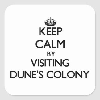 Guarde la calma visitando a la colonia pegatina cuadrada