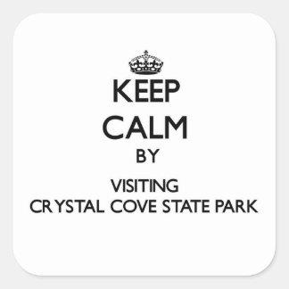 Guarde la calma visitando el parque de estado pegatina cuadrada