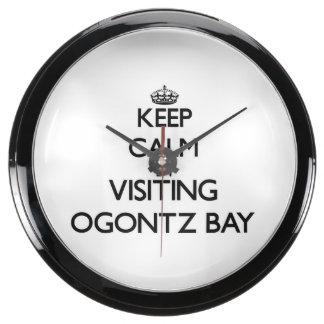 Guarde la calma visitando la bahía Michigan de Ogo Relojes Acuario