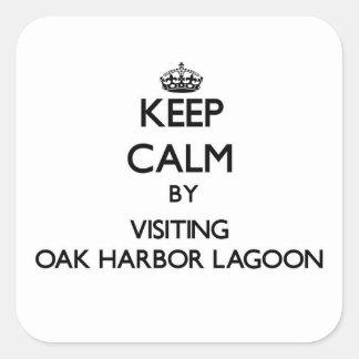 Guarde la calma visitando la laguna Washington del Calcomania Cuadradas