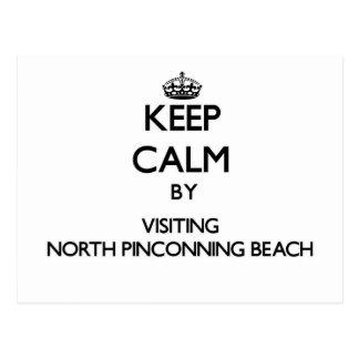 Guarde la calma visitando la playa del norte Michi