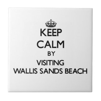 Guarde la calma visitando la playa nuevo Hamps de  Tejas