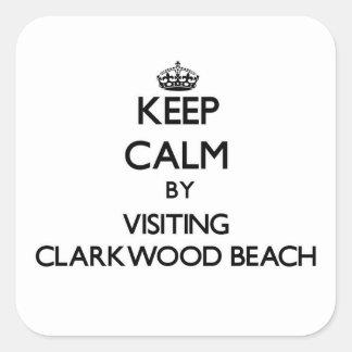 Guarde la calma visitando la playa Ohio de Pegatina Cuadrada