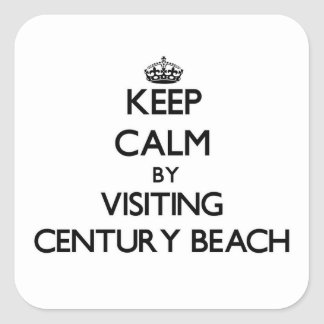 Guarde la calma visitando la playa Ohio del siglo Pegatina Cuadrada