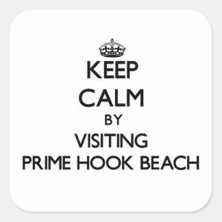 Guarde la calma visitando la playa primera
