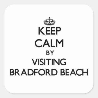 Guarde la calma visitando la playa Wisconsin de Br Pegatinas Cuadradas