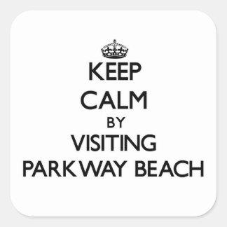Guarde la calma visitando la playa Wisconsin de la Calcomanias Cuadradas