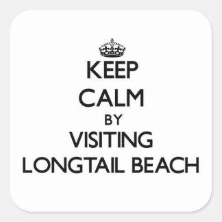 Guarde la calma visitando la playa Wisconsin de Colcomanias Cuadradases