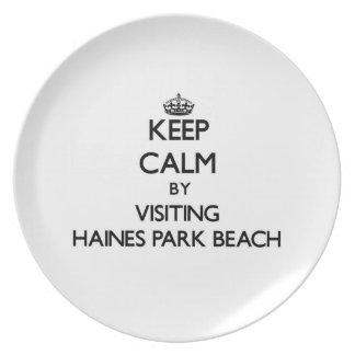 Guarde la calma visitando la playa Wisconsin del p Plato