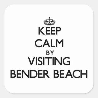 Guarde la calma visitando la playa Wisconsin del Pegatina Cuadradas