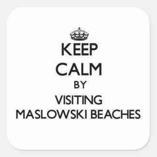 Guarde la calma visitando las playas Wisconsin de Calcomanías Cuadradass