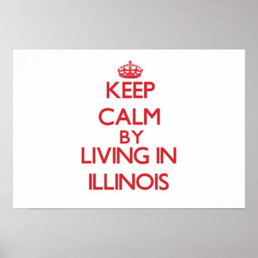 Guarde la calma viviendo en Illinois Poster
