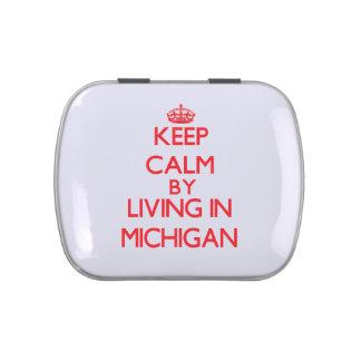 Guarde la calma viviendo en Michigan Latas De Dulces