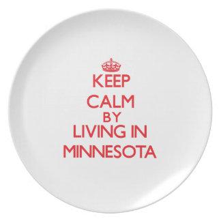 Guarde la calma viviendo en Minnesota Plato Para Fiesta