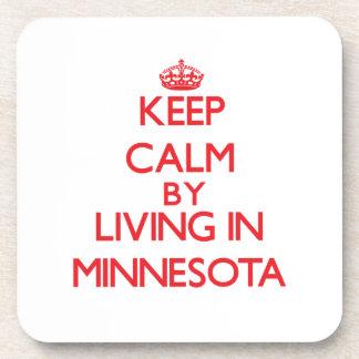Guarde la calma viviendo en Minnesota Posavaso