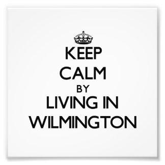 Guarde la calma viviendo en Wilmington Cojinete