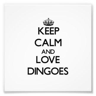 Guarde la calma y ame Dingoes Fotografía