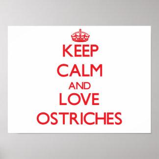 Guarde la calma y ame las avestruces posters