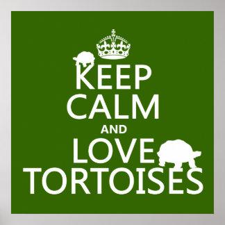 Guarde la calma y ame las tortugas (cualquier colo póster