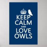 Guarde la calma y ame los búhos (cualquier color) poster