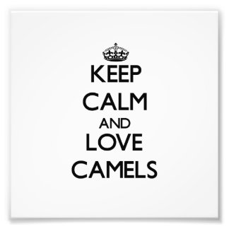Guarde la calma y ame los camellos foto