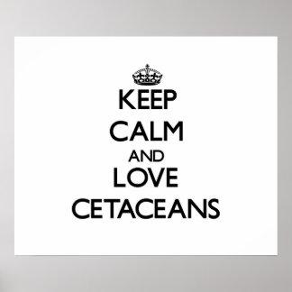 Guarde la calma y ame los cetáceos