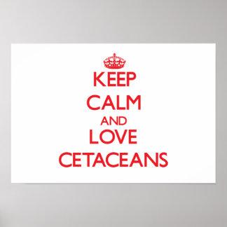 Guarde la calma y ame los cetáceos poster