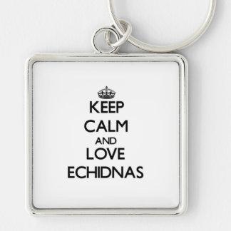 Guarde la calma y ame los Echidnas