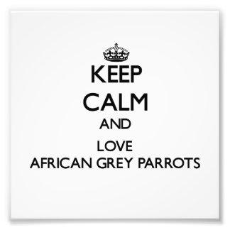 Guarde la calma y ame los loros del gris africano foto