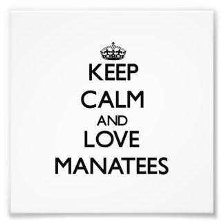 Guarde la calma y ame los Manatees Fotografias