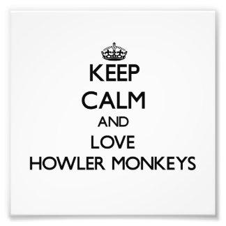 Guarde la calma y ame los monos de chillón fotografía