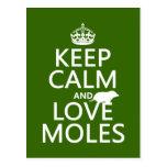 Guarde la calma y ame los topos (cualquier color d tarjetas postales