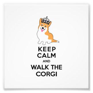 Guarde la calma y camine el perro lindo del Corgi Fotografía